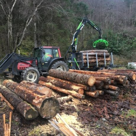 forestry-contracting-association-2-Small